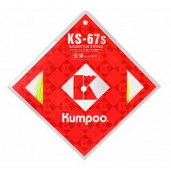 KS-67S (10m)