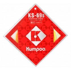 KS-69S (10m)